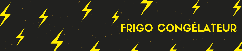 Frigo congélateur combiné pas cher en déstockage Samsung, Lg, Beko